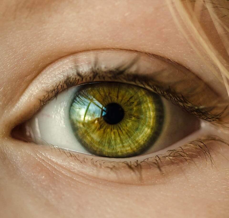 Augendiagnose - Physiotherapie Neidhardt